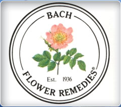 Bach Flower Remedies. bach flower